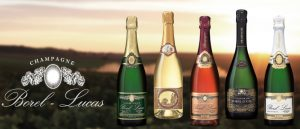 Champagne Tasting Event with Champagne Occasions